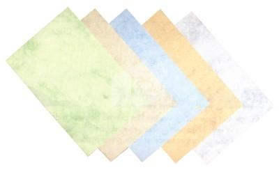 07514101